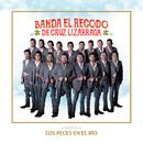 Los Peces En El Río/Banda El Recodo De Cruz Lizárraga