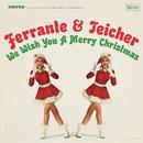 We Wish You A Merry Christmas/Ferrante & Teicher
