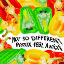 Not So Different (Remix) (feat. Awich)/AI