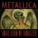 Some Kind Of Monster/Metallica