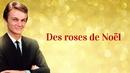 Des roses de Noël/Claude François