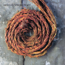 Further Down The Spiral/Nine Inch Nails