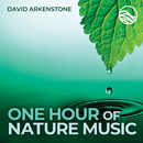 One Hour Of Nature Music: For Massage, Yoga And Relaxation/David Arkenstone