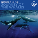 Nature & Music: Journey Of The Whales/David Arkenstone