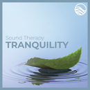 Sound Therapy: Tranquility/David Lyndon Huff