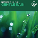 Nature & Music: Gentle Rain/David Arkenstone
