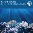 Nature & Music: Ocean Dreams/David Arkenstone
