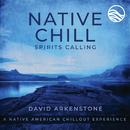 Native Chill Spirits Calling: A Native American Chillout Experience/David Arkenstone