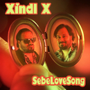 SebeLoveSong/Xindl X