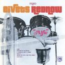 Eivets Rednow/Stevie Wonder