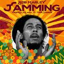 Jamming (Tropkillaz Remix) (feat. Tiwa Savage, Tropkillaz)/Bob Marley
