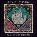 Joy And Pain: The Lifelines Remixes (feat. Frankie Beverly, Kurtis Blow)/Maze