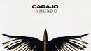 Punk Sin Cresta (Audio)/Carajo