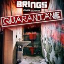 Quarantäne (feat. Jürgen Zeltinger)/Brings