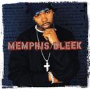 The Understanding/Memphis Bleek