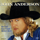 You Can't Keep A Good Memory Down/John Anderson