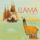 Close To The Silence/Llama