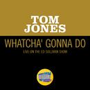 Whatcha' Gonna Do (Live On The Ed Sullivan Show, June 13, 1965)/Tom Jones