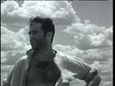 Half A World Away (Official Music Video)/R.E.M.