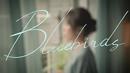 Bluebirds/Tanya Chua