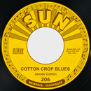 Cotton Crop Blues / Hold Me in Your Arms/James Cotton