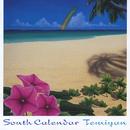 サウス・カレンダー/Temiyan
