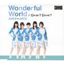 Wonderful World/Ca va ? Ca va ?(サヴァサヴァ)/Juice=Juice