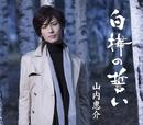 白樺の誓い(雨盤)/山内 惠介