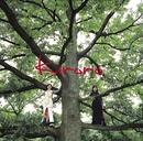 長い間 ~キロロの森~/Kiroro