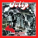 Tulip おいしい曲すべて 1972-2006 Young Days~(Disc-1)/TULIP