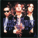 WEEDS&FLOWERS/UP-BEAT