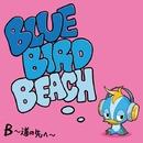 道の先へ ~信じる力は明日を変える~/BLUE BIRD BEACH