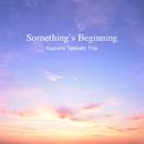 Something's Beginning/Kazumi Tateishi Trio