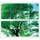 Tree of Life/楠木 勇有行