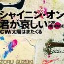 シャイニン・オン君が哀しい~FOR NEWAGE/鈴木 トオル