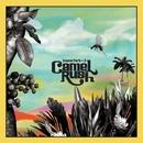SOUND PARK Vol.3/CAMEL RUSH