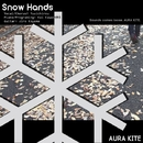 <SOMA produce>Snow Hands/AURA KITE