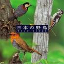 <COLEZO!> 自然音 日本の野鳥/Victor Sound Effect Team