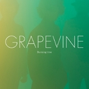 Burning tree/GRAPEVINE