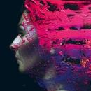 ハンド・キャンノット・イレース/Steven Wilson