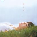緋衣草(サルビア)/岩崎(益田)宏美