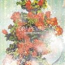 ROADSIDE PROPHET/GRAPEVINE