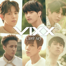 Can't say/VIXX