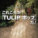 これこそが「TULIP ポップ」だ!(SELECTION)/TULIP