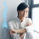 さらせ冬の嵐(恋盤)/山内 惠介