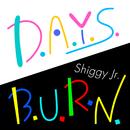 D.A.Y.S./B.U.R.N./Shiggy Jr.