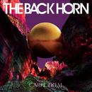 太陽の花/THE BACK HORN