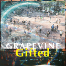 Gifted/GRAPEVINE