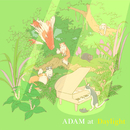 Daylight/ADAM at