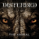 The Animal/Disturbed